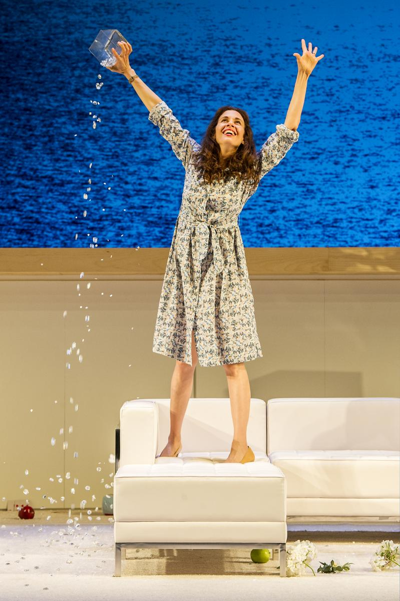 BWW REVIEW: Sarah Ruhl's THE CLEAN HOUSE at Williamstown Theatre Festival