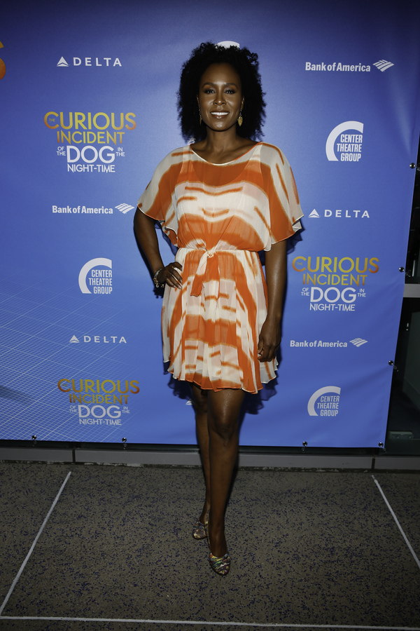 "Actor Sydelle Noel arrives for the opening night performance of ""The Curious Incident of the Dog in the Night-Time"" at Center Theatre Group/Ahmanson Theatre on Thursday, August 3, 2017, in Los Angeles, California. (Photo by Ryan Miller/Capture Imaging)"
