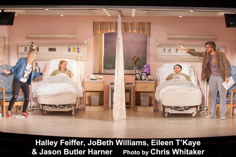 BWW Interview: Playwright/Actress Halley Feiffer on Her Long Titles, Collaborations, & Growing Up Funny