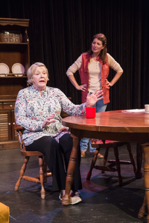 Photo Flash: First Look at Kenneth Jones' HOLLYWOOD, NEBRASKA at 2017 Wyoming Theater Festival