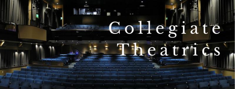 Collegiate Theatrics: Vanderbilt University's MICHAEL MAERLENDER