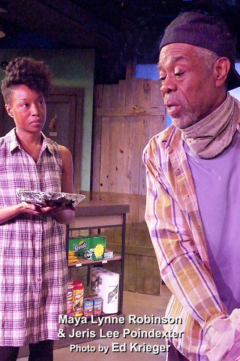 BWW Review: RUNAWAY HOME - An Always Intense,  Somewhat Touching Katrina Tale