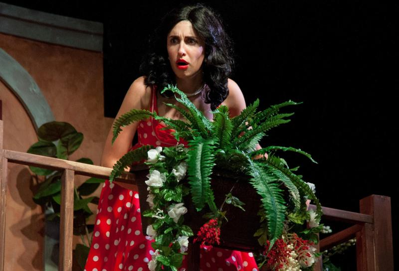 BWW Review: MUCH ADO ABOUT NOTHING at Annapolis Shakespeare Company Charms in a Fresh Take on a Classic