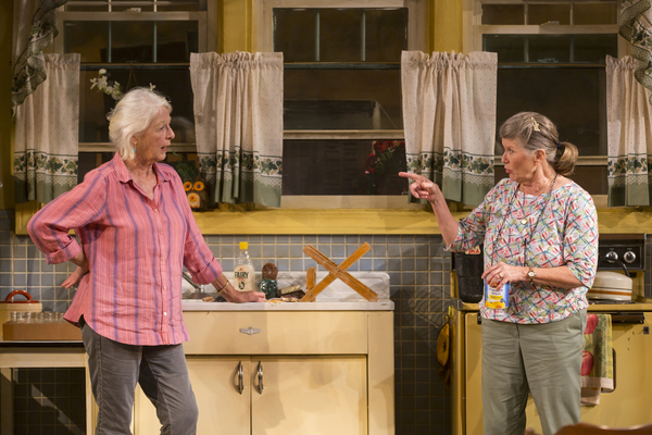 Photo Flash: First Look at Jane Alexander, Judith Ivey and Denis Arndt in FIREFLIES World Premiere at Long Wharf Theatre