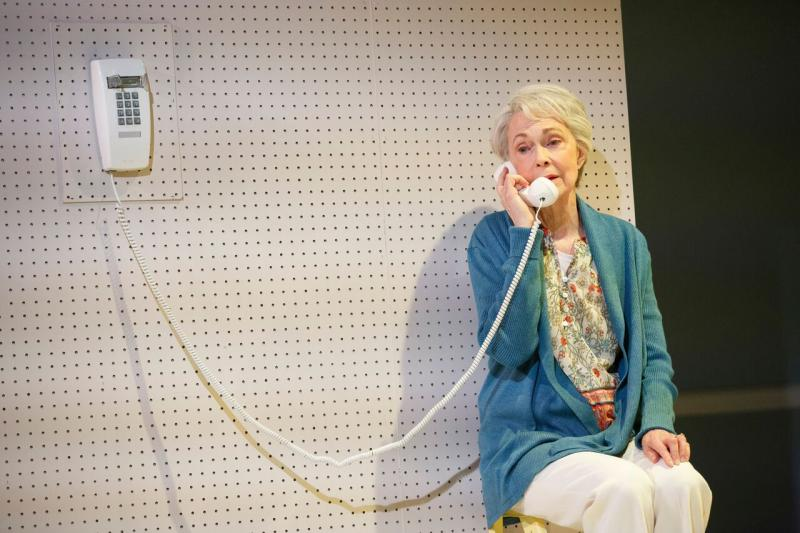 BWW Review:  Peter Friedman and Deanna Dunagan Star as Estranged Mother and Son in THE TREASURER