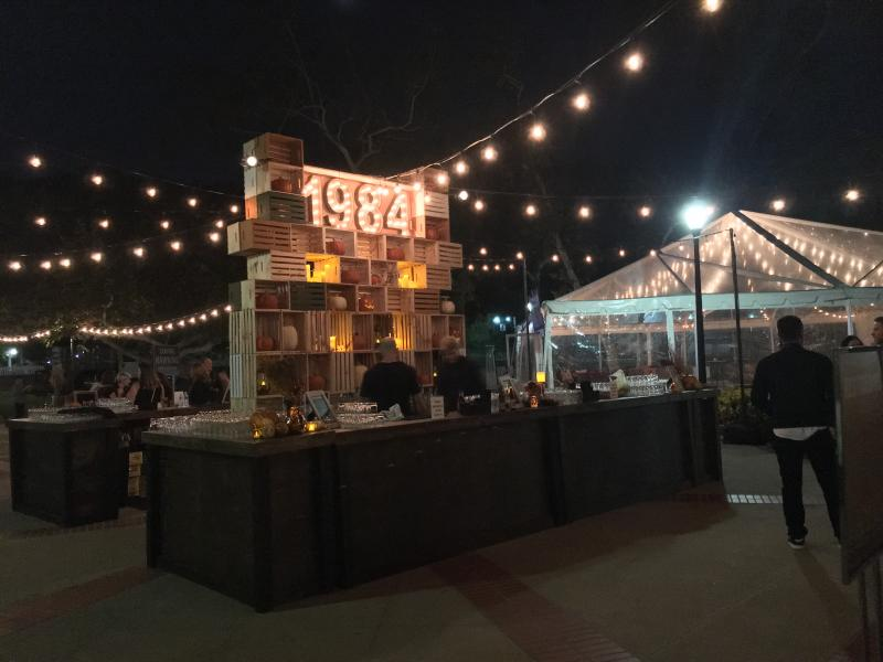 BWW Exclusive: Behind the Scenes at the STRANGER THINGS 2 Premiere Party!