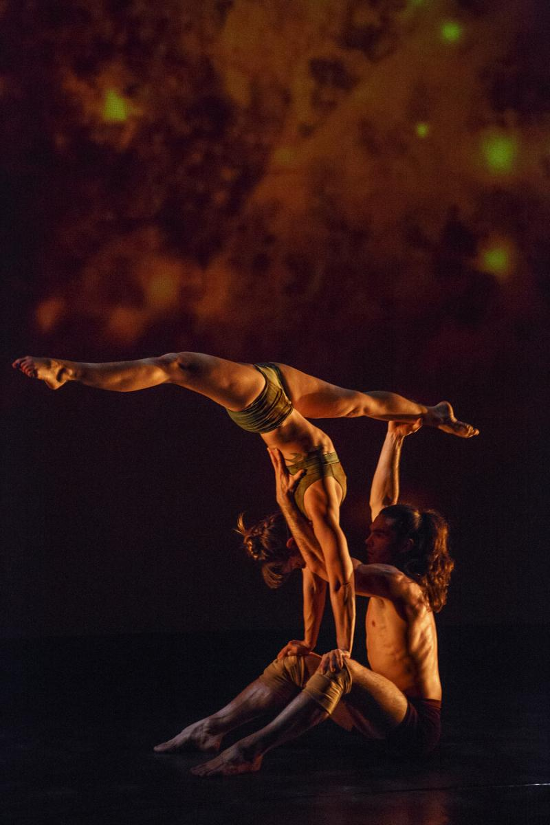 BWW Review: Red Sky's Insanely Physical BACKBONE Will Leave You Breathless
