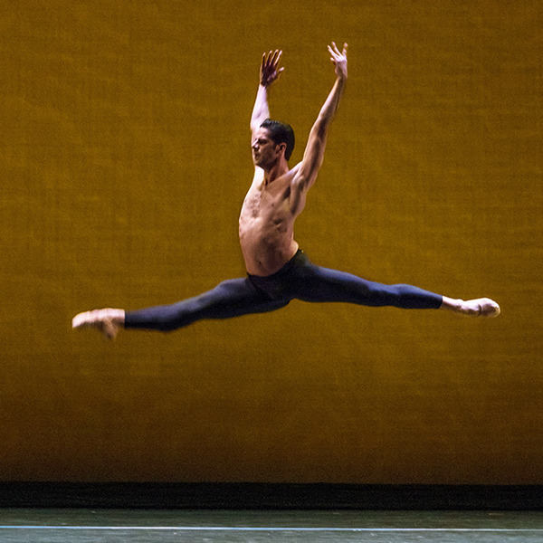 Marcelo Gomes  Photo