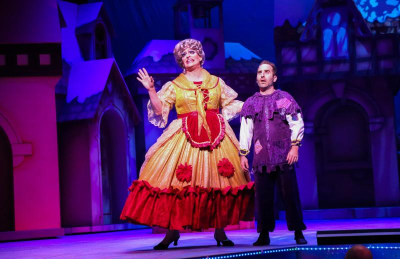 BWW Review: SLEEPING BEAUTY AND HER WINTER KNIGHT Brings Out the Child in All at Theatre Under The Stars