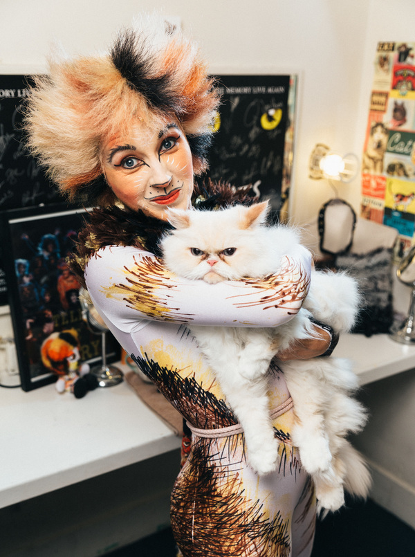 Adoptable shelter cat from The Humane Society of New York appears backstage with Sara Jean Ford