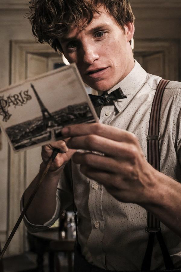 """EDDIE REDMAYNE as Newt Scamander in Warner Bros. Pictures' fantasy adventure """"FANTASTIC BEASTS: THE CRIMES OF GRINDELWALD,"""" a Warner Bros. Pictures release.  Photo by Jaap Buitendijk"""