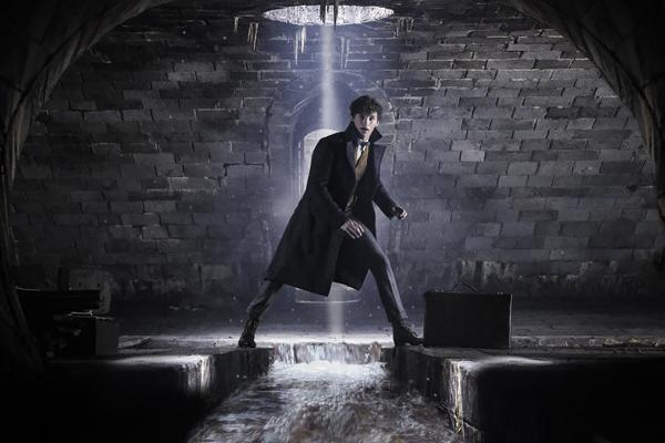 """EDDIE REDMAYNE as Newt Scamander in Warner Bros. Pictures' fantasy adventure """"FANTAST Photo"""