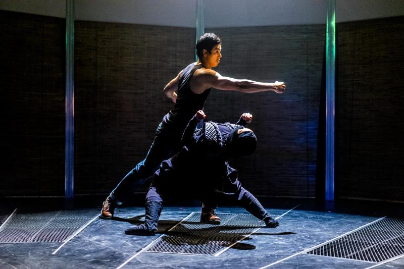 BWW Review: VIETGONE at San Diego Rep
