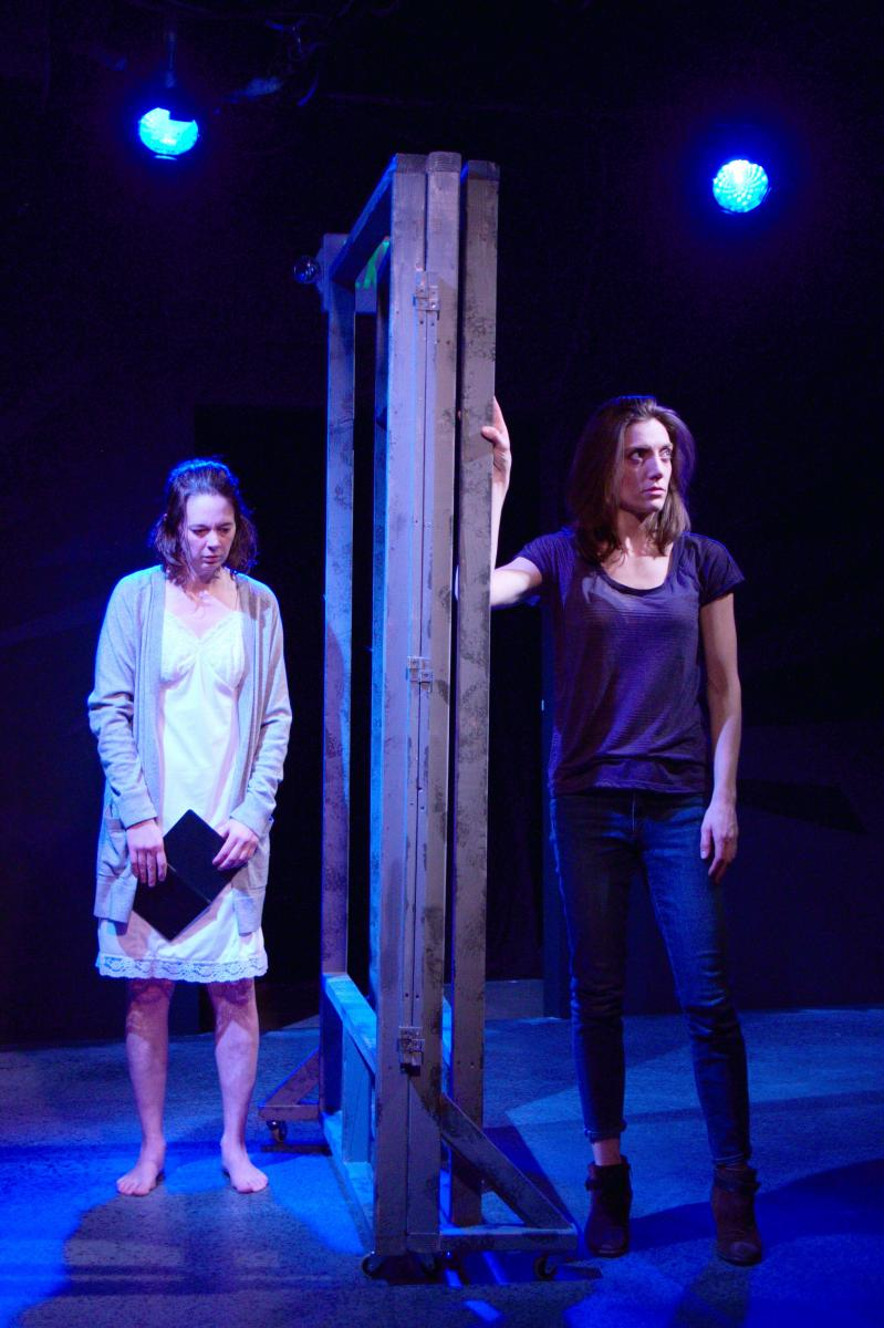 BWW Review: Theater Schmeater's Potent SWALLOW: A Visceral Examination of Loneliness