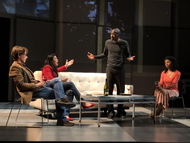 BWW Review: Nashville Rep's Beautifully Acted Take on Lydia R. Diamond's SMART PEOPLE