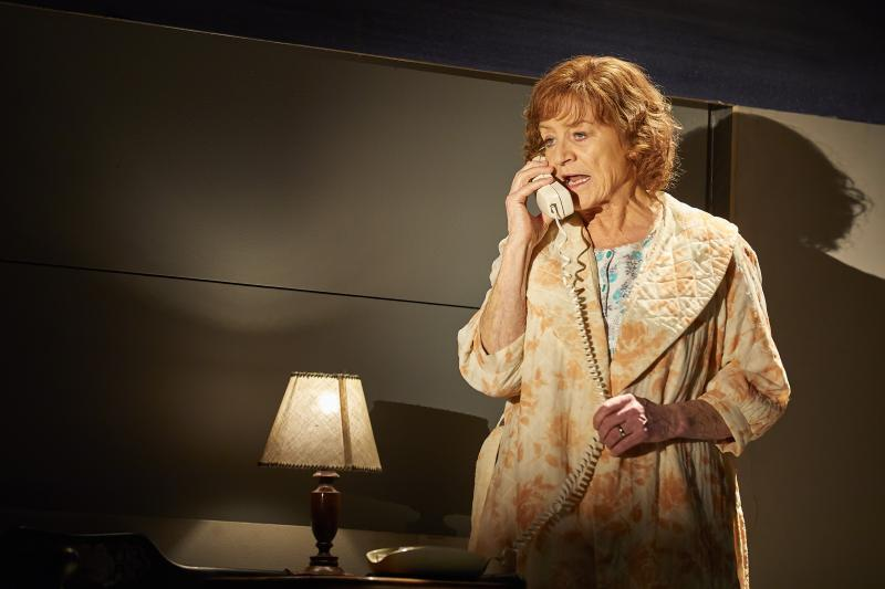 BWW Interview: Susan Brown and Her Bevy of Characters in ANGELS IN AMERICA