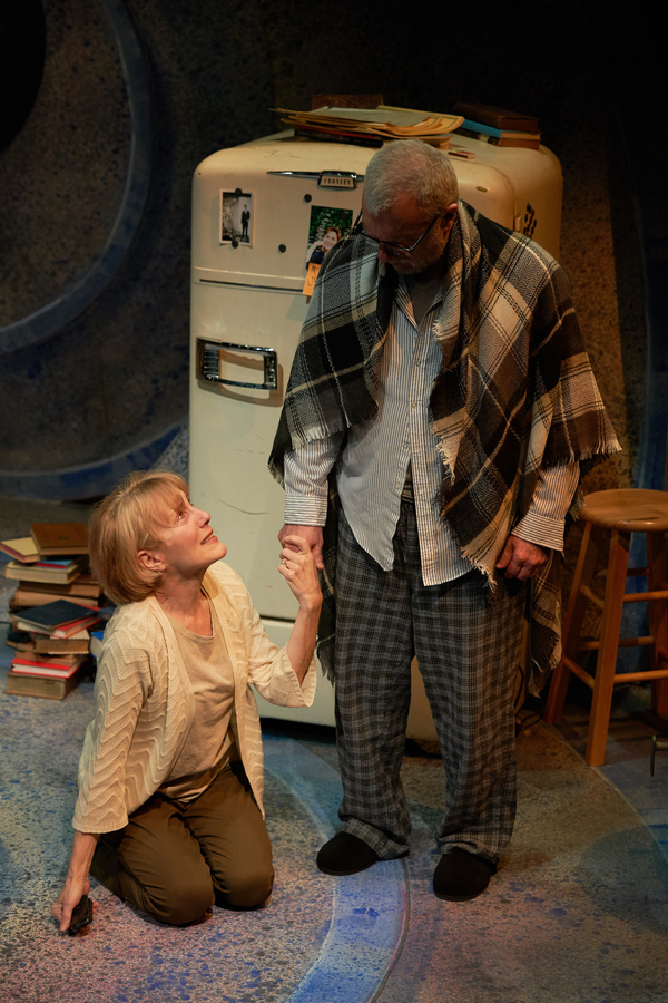 """A Tree, Falling"" directed by Michael Dorsey and played by Jerry Vogel and Kari Ely,  Photo"