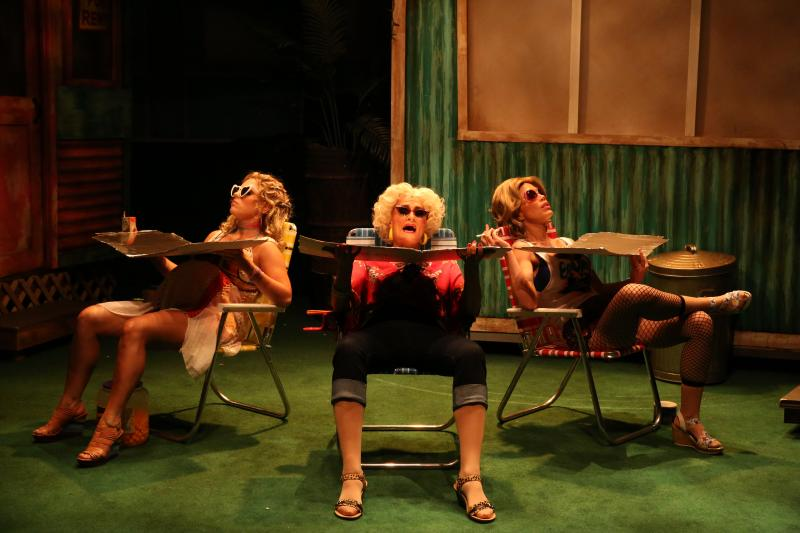 BWW Review: Stages' Zany GREAT AMERICAN TRAILER PARK  MUSICAL Is the Most Fun You've Had in a Long Time
