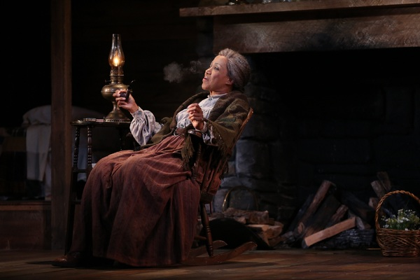 Photo Flash: Westport Country Playhouse Presents FLYIN' WEST