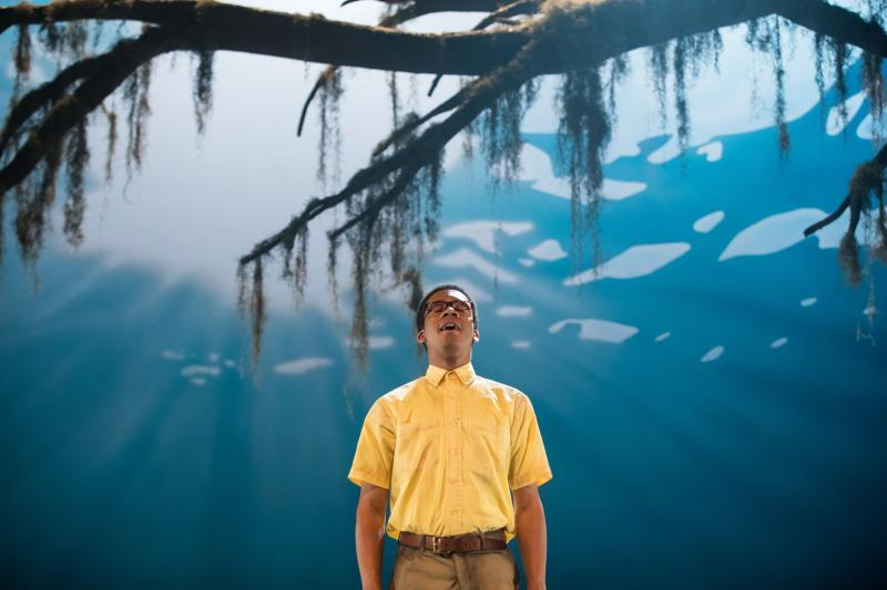 BWW Review: EVER IN THE GLADES at Kennedy Center
