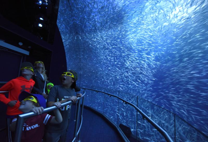 Save 20% on NATIONAL GEOGRAPHIC ENCOUNTER: OCEAN ODYSSEY in Times Square
