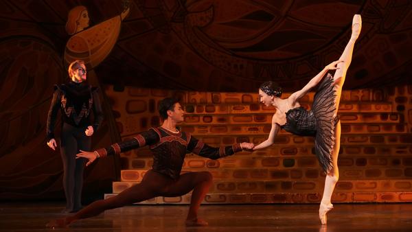 Photo Flash: SWAN LAKE Comes To Houston Ballet