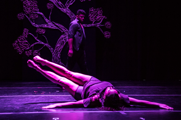 Photo Coverage: First look at New Vision Dance Co.'s BRANCHING OUT