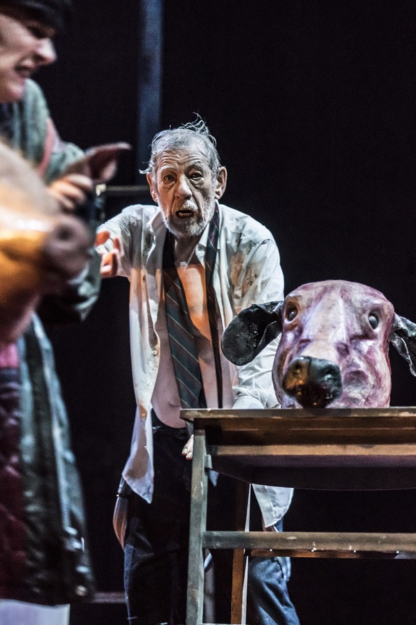 Photo Flash: First Look at All New Photos of Ian McKellen in KING LEAR