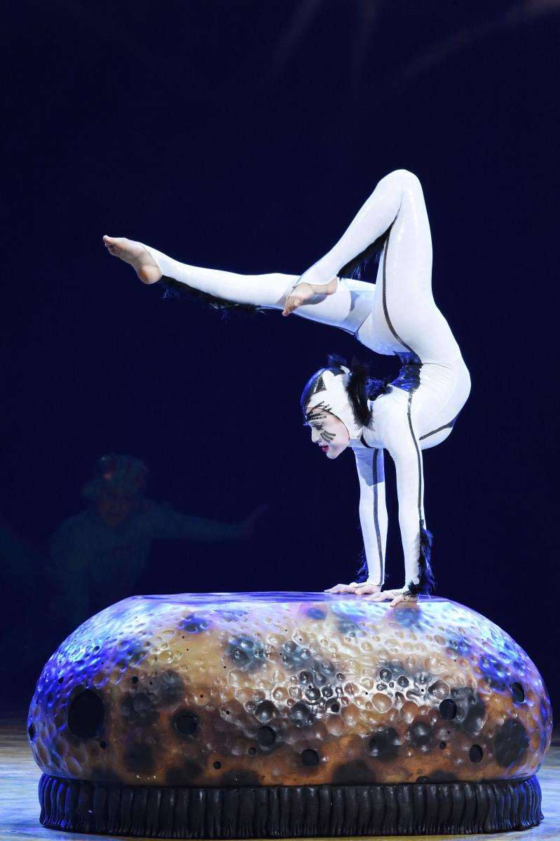 BWW Interview: Alanna Baker Talks Cirque du Soleil's OVO
