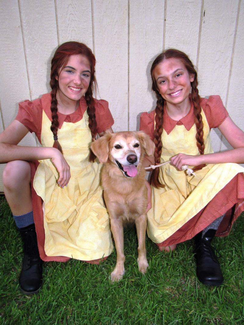 BWW Previews: Bet Your Bottom Dollar On ANNIE at Slidell Little Theatre