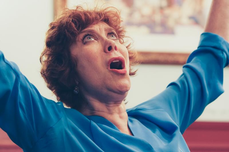 BWW Review: Shopping Is Serious Business in Cheryl Stern's Hilarious and Poignant SHOES AND BAGGAGE