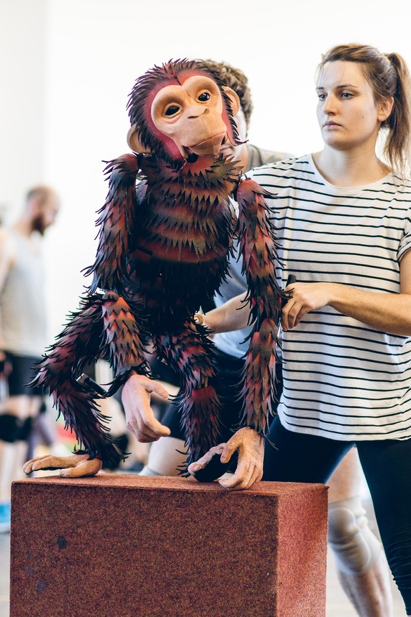 Photo Flash: In Rehearsal with the UK Tour of DOCTOR DOLITTLE