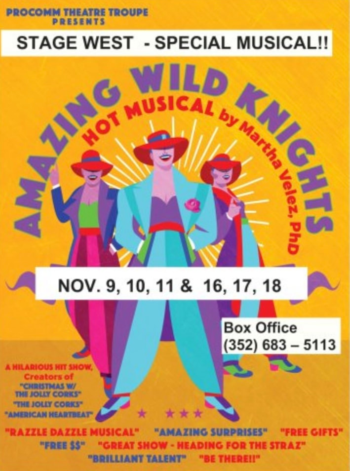 BWW Previews: 'AMAZING WILD KNIGHTS' Tells About the Glass Ceiling in Show Business for Women at Stage West Playhouse