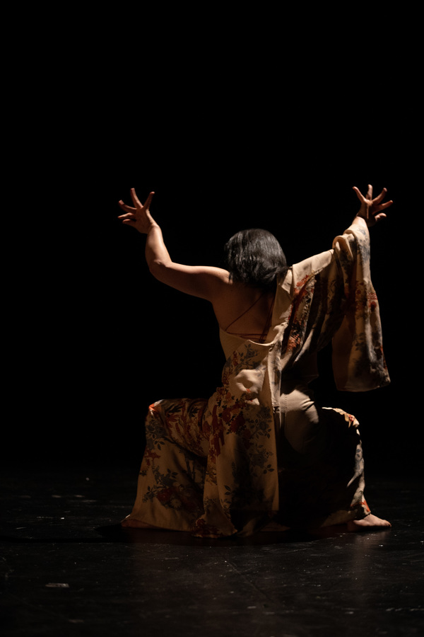 BWW Feature: The New York Butoh Institute Festival 2018 Showcases Women and International Artists