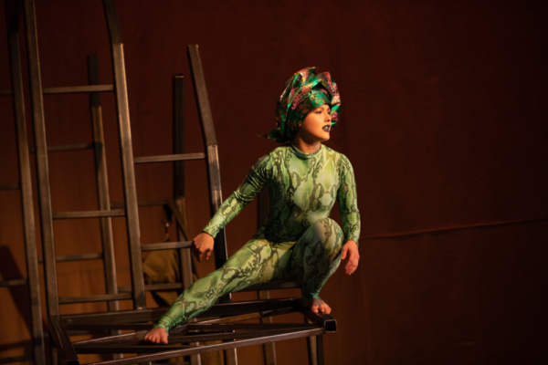 Photo Flash: First Look At Flint Repertory Theatre's THE LITTLE PRINCE
