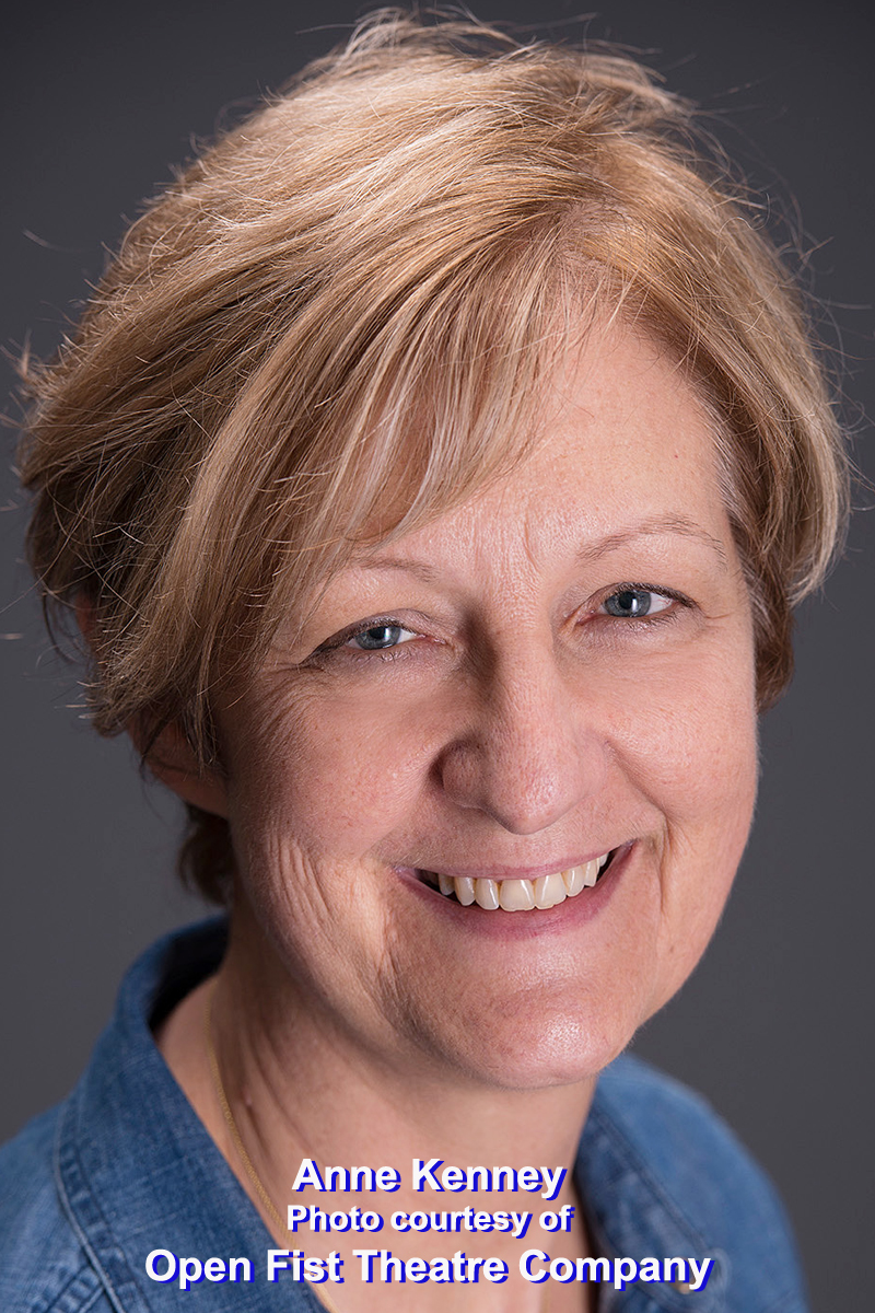 BWW Interview: TV Scripter Anne Kenney At LAST Heeds CALL To Tackle Theatre