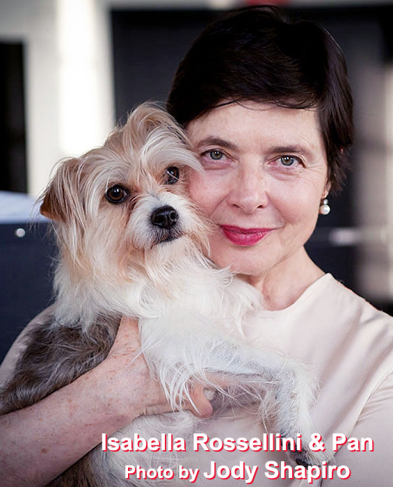 BWW Interview: Isabella Rossellini Exploring LINKs, PORNO & a Masters
