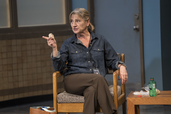 Janet Ulrich Brooks