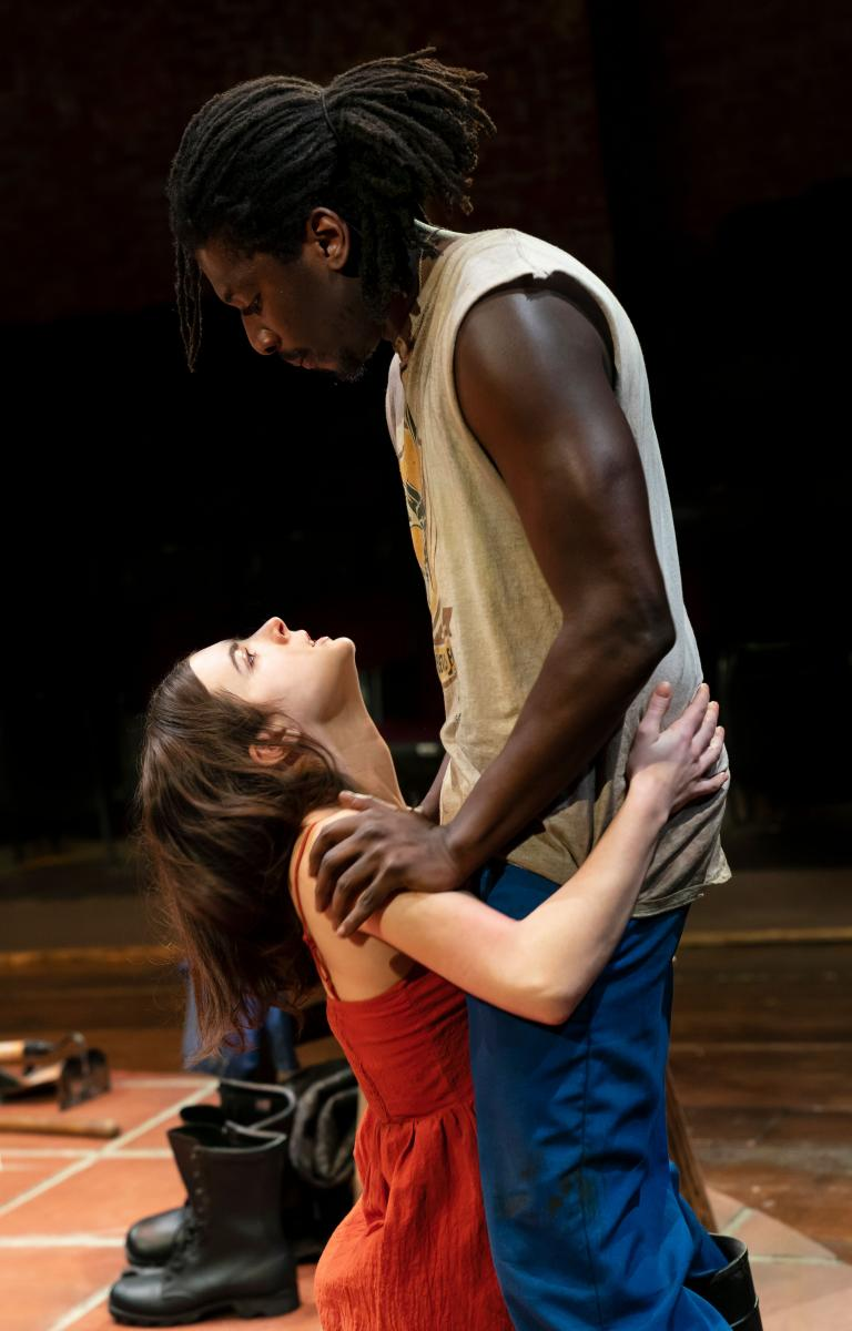BWW Review: Yael Farber Sets A Strindberg Classic in Post-Apartheid South Africa in MIES JULIE