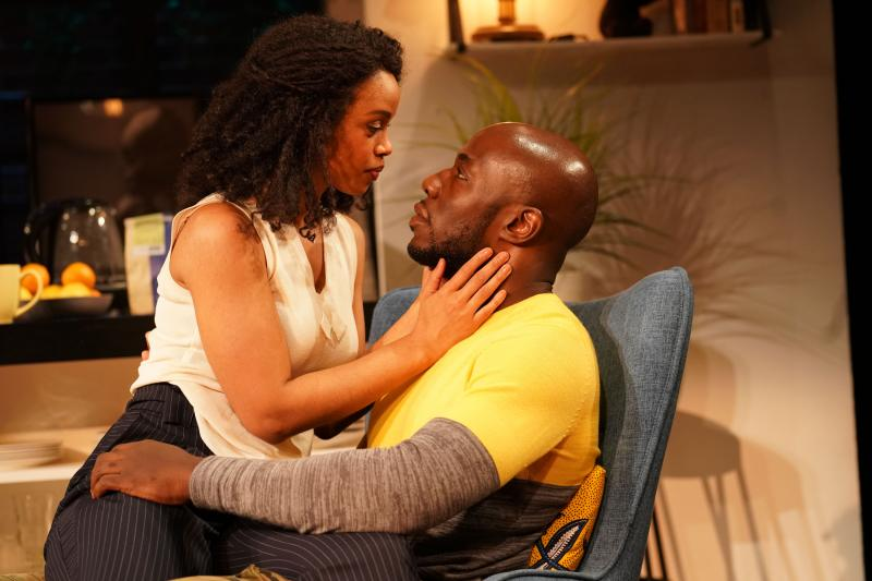 BWW Review:  Loy A. Webb's Tense and Topical THE LIGHT Discusses The Privilege of Being Believed