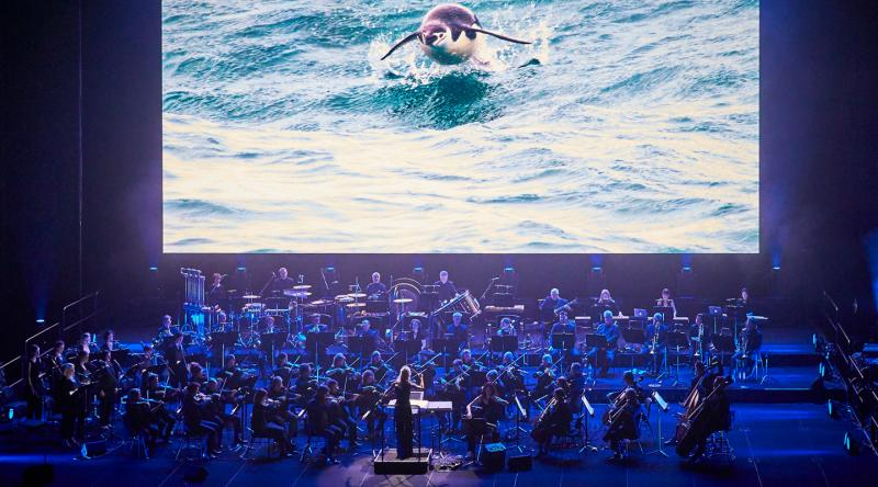 BWW REVIEW: BLUE PLANET II LIVE IN CONCERT Is A Brilliant Pairing Of Sydney Symphony Orchestra With The BBC's Famous Nature Show, Beautifully Narrated by Joanna Lumley