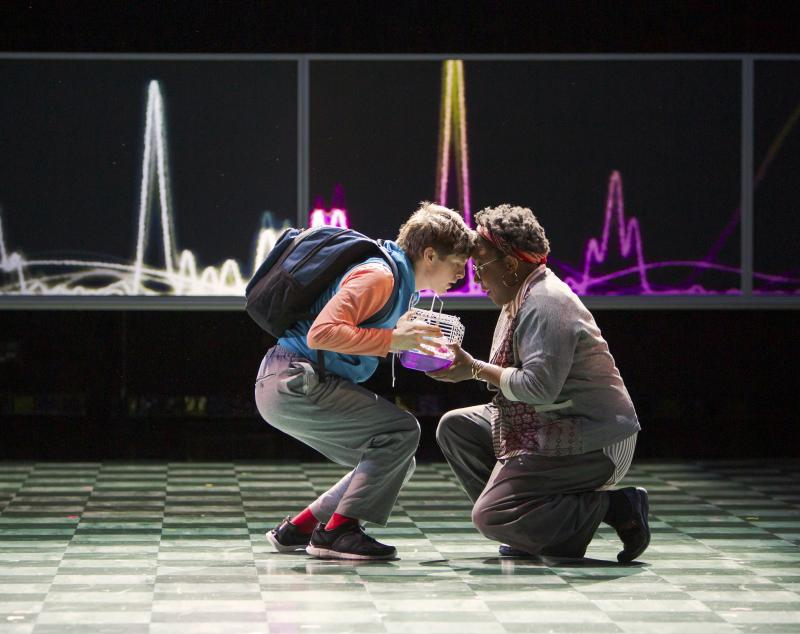 BWW Review: Village's THE CURIOUS INCIDENT OF THE DOG IN THE NIGHT-TIME is Curiously Inconsistent