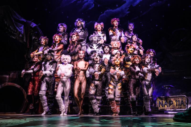BWW Review: CATS at the Paramount - They Sing, They Dance, That's About It