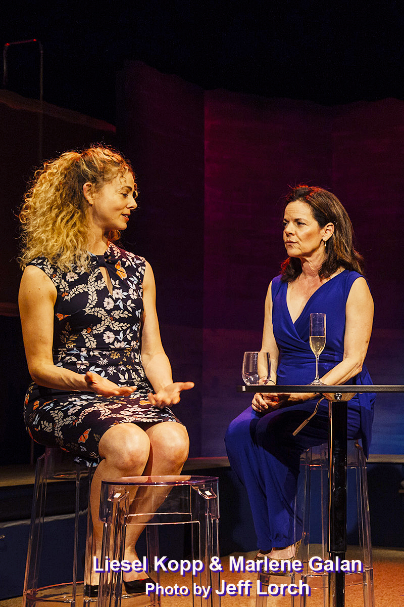 BWW Review: THE THINGS WE DO - An Affair To Remember - Or Not