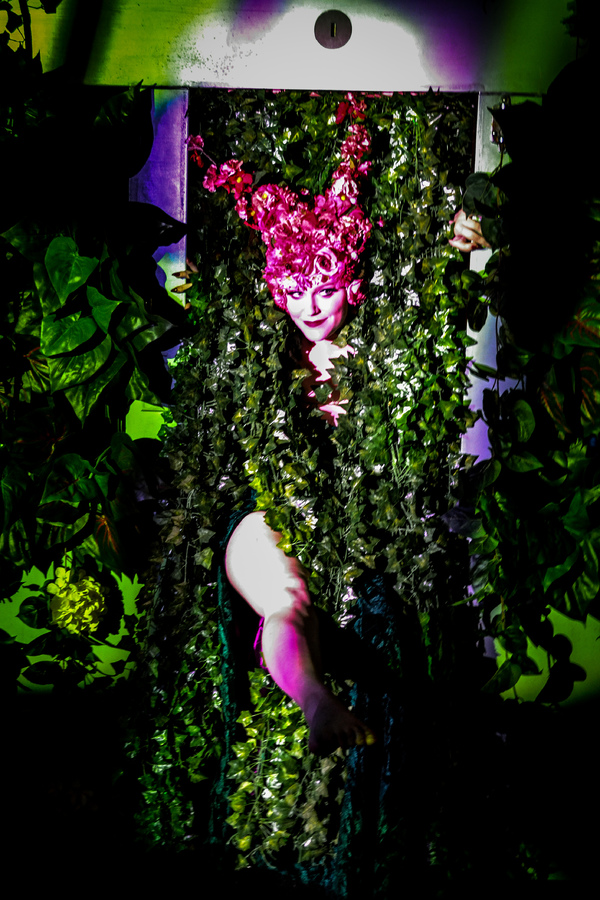 Photo Flash: First Look At Site-Specific LITTLE SHOP OF HORRORS At Bool's Flower Shop