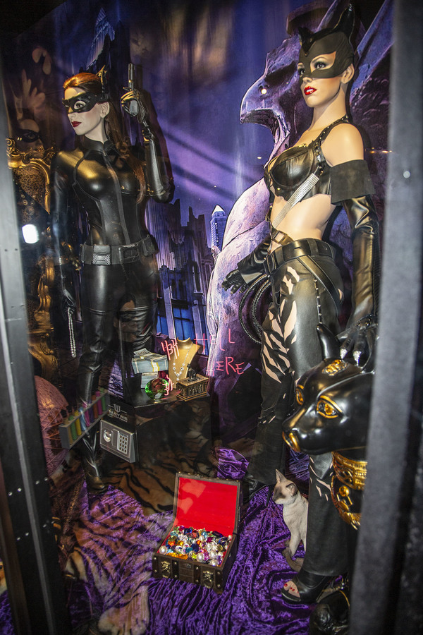Catwomen Exhibit features Anne Hathaway and Halle Berry Photo
