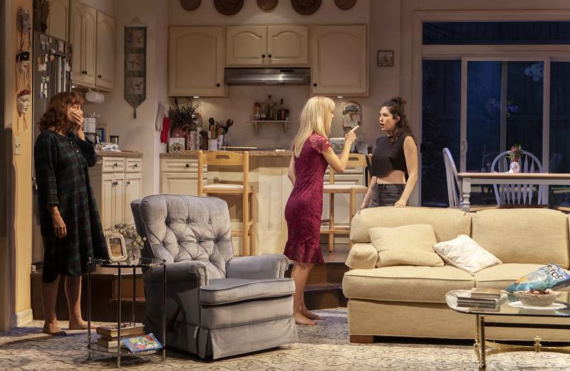 BWW Review: Marin Ireland and Susan Sarandon in Jesse Eisenberg's Tale of Immigration and Codependency, HAPPY TALK