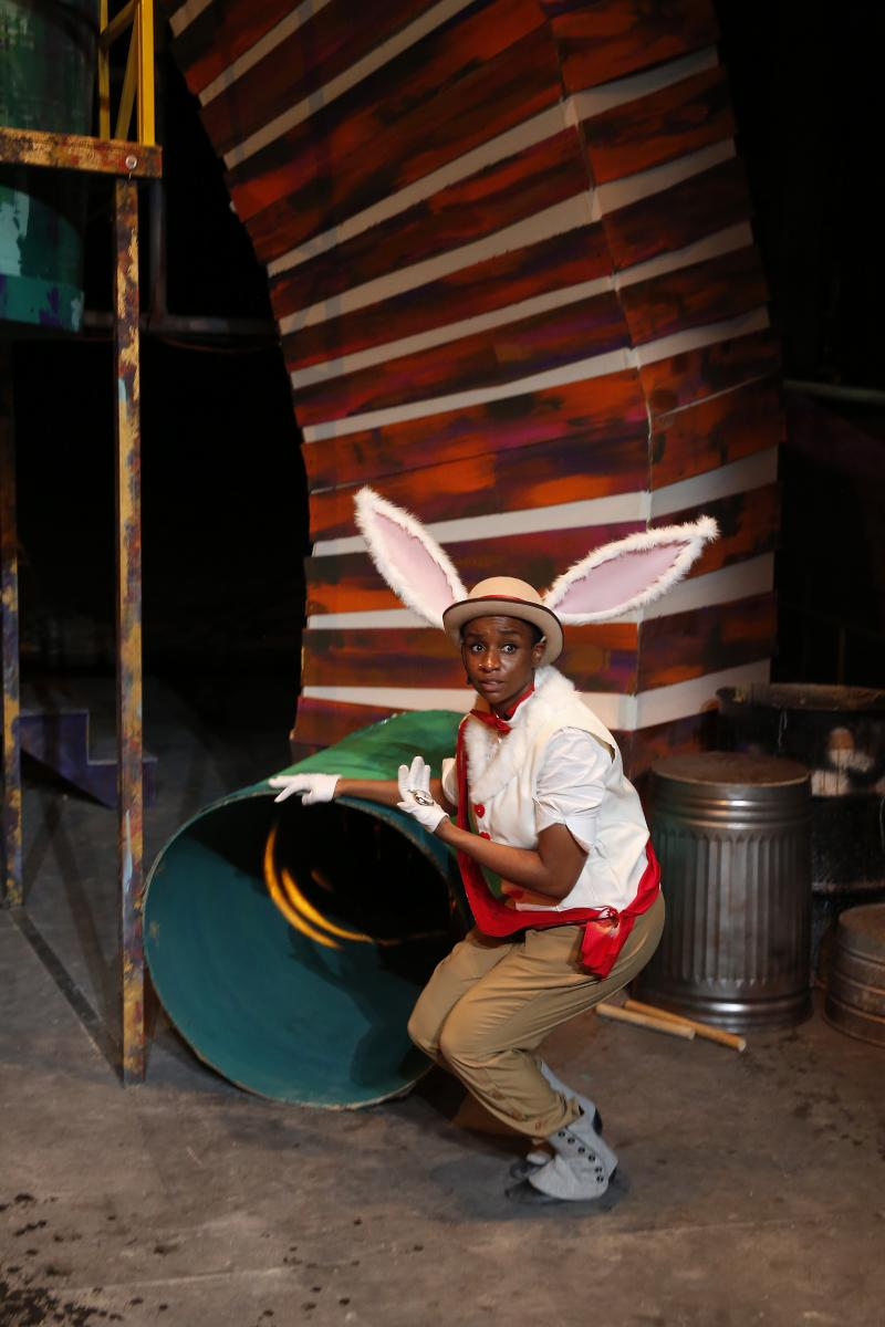 BWW Review: Down The Rabbit Hole is Fun with ALICE IN WONDERLAND at The Birmingham Children's Theatre