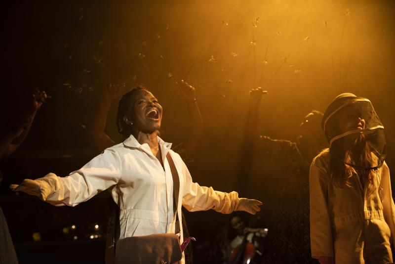 BWW Review: Lynn Nottage, Duncan Sheik and Susan Birkenhead's Beautiful and Thrilling THE SECRET LIFE OF BEES