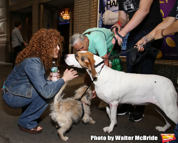 Bernadette Peters with dogs from The Humane Society of New York